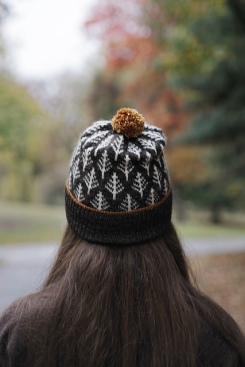 https://www.ravelry.com/patterns/library/deep-woods-toque